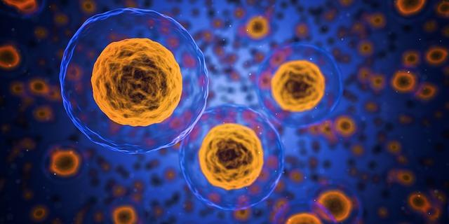 Live cells